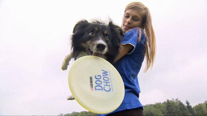 Latające psy, czyli zawody Dog Chow Disc Cup