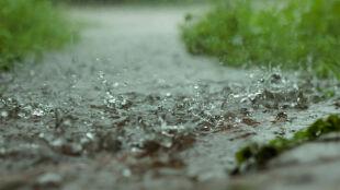 Prognoza pogody na dziś: deszczowo w większości kraju. Możliwe burze