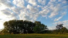 Wiosna w obiektywie Reportera 24 (Kontakt24/Jaga_)