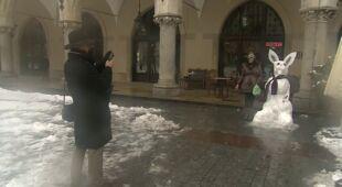 Śniegowy zając przed Sukiennicami (TVN 24)
